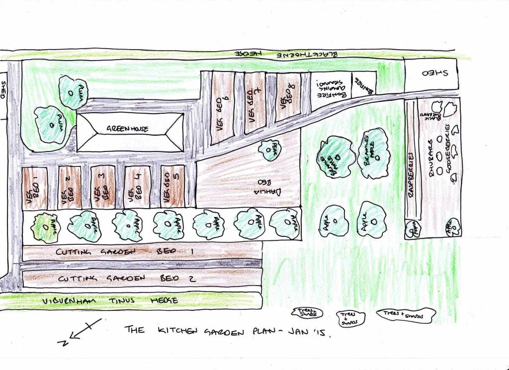 Kitchen garden plan Jan'15