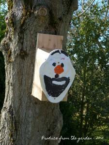 Nest box 1