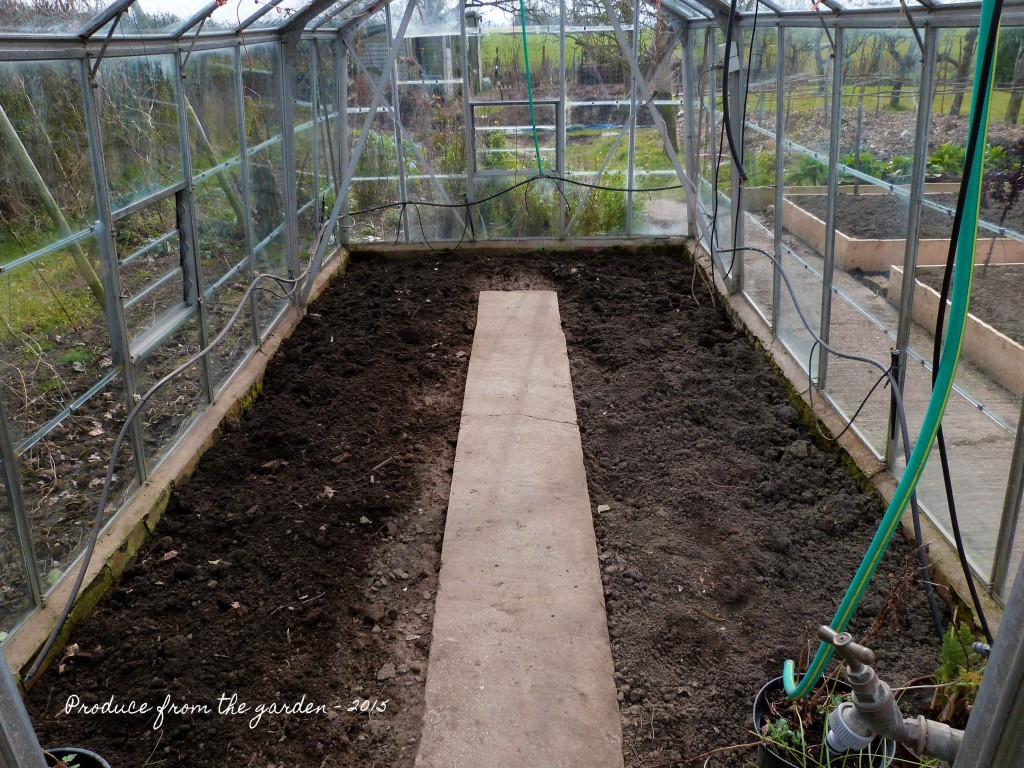 green house beds filled