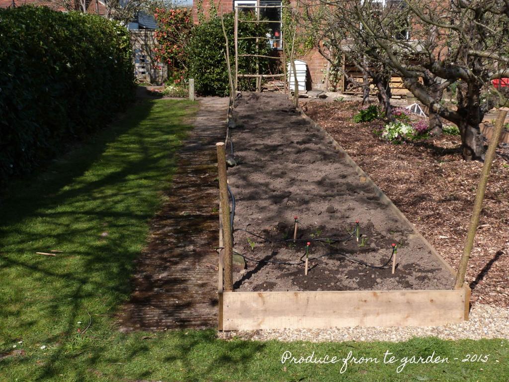 Cutting Garden Border