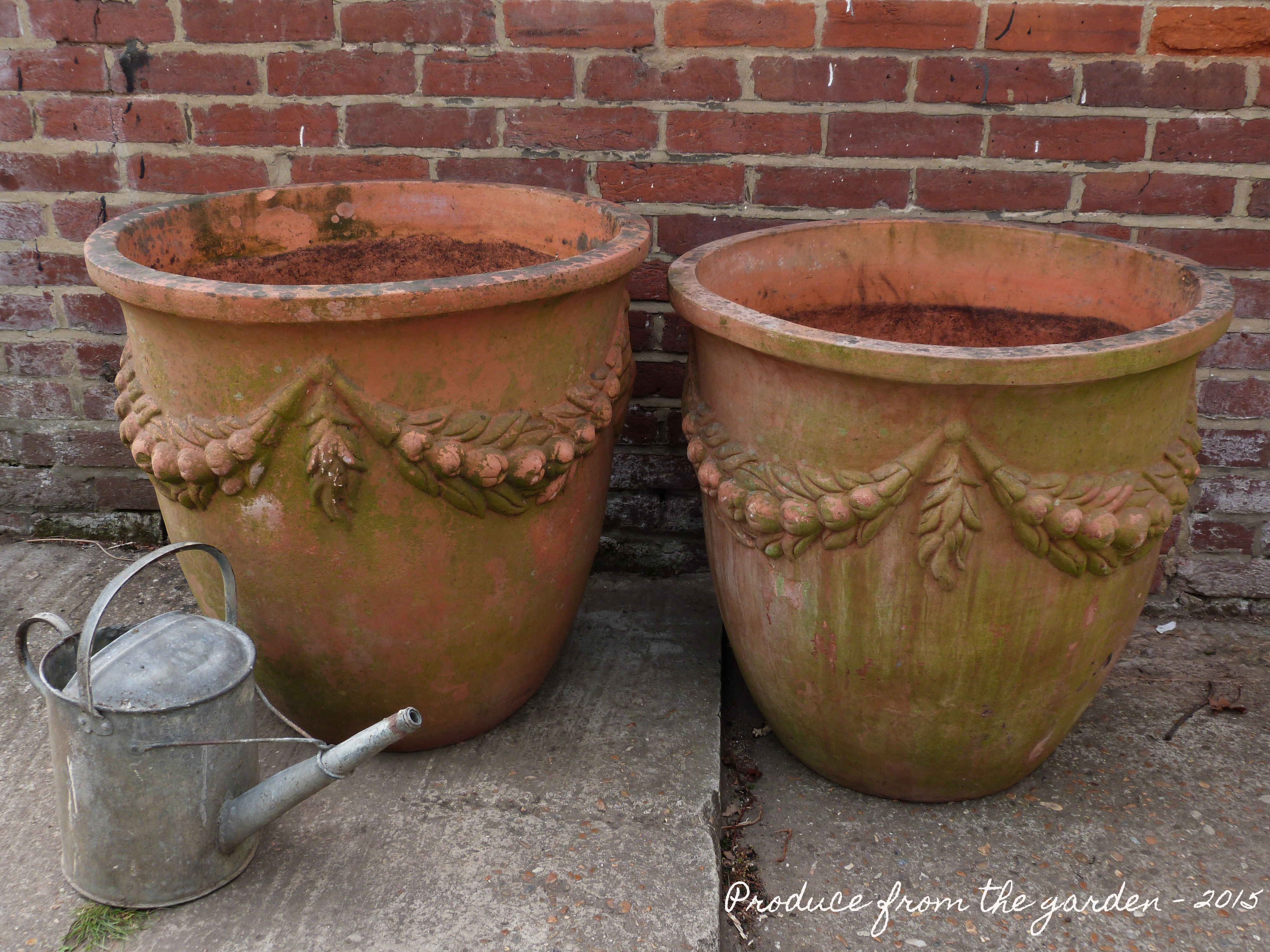 Nice Large Terracotta Pots