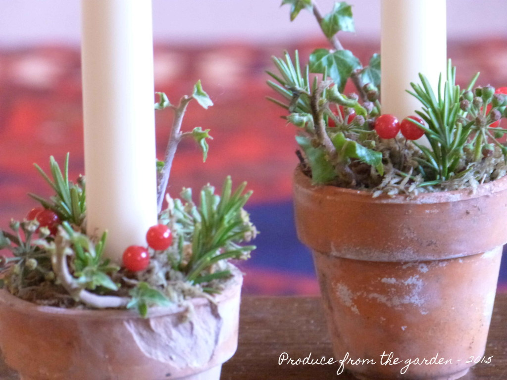 Christmas flower pots close up