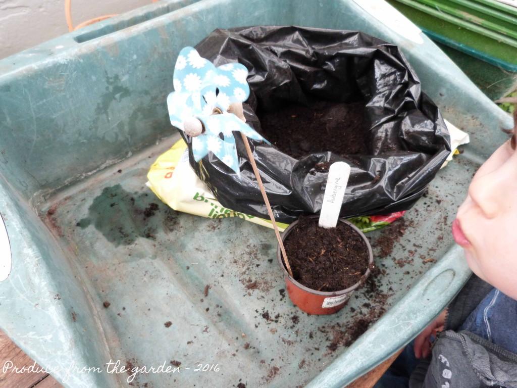 Accessorizing the pots
