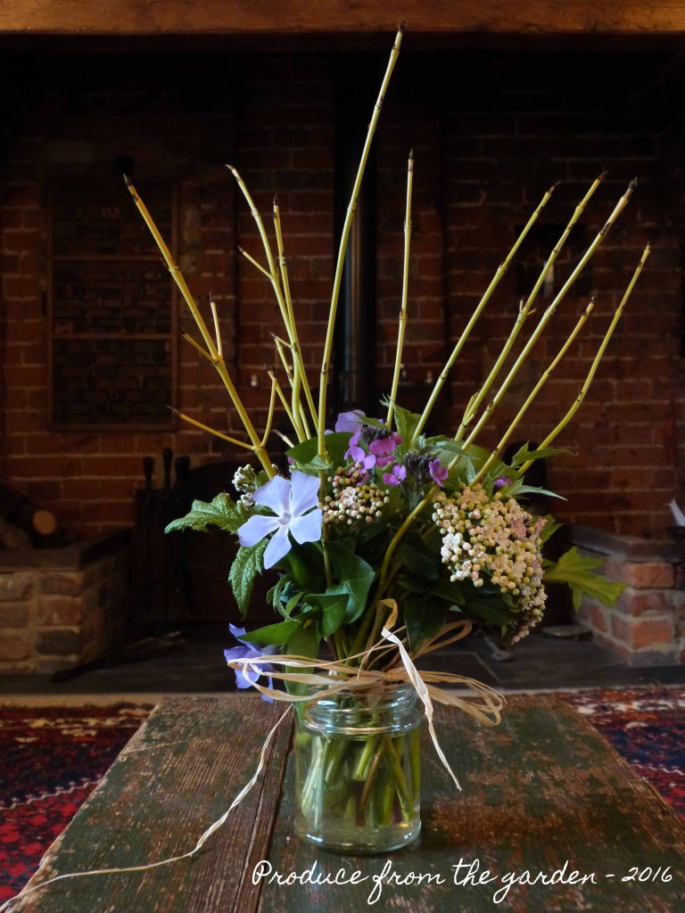 Winter posy from the garden