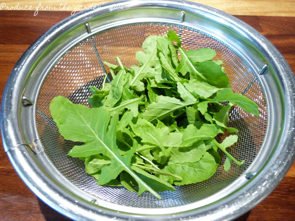 Cut winter salad