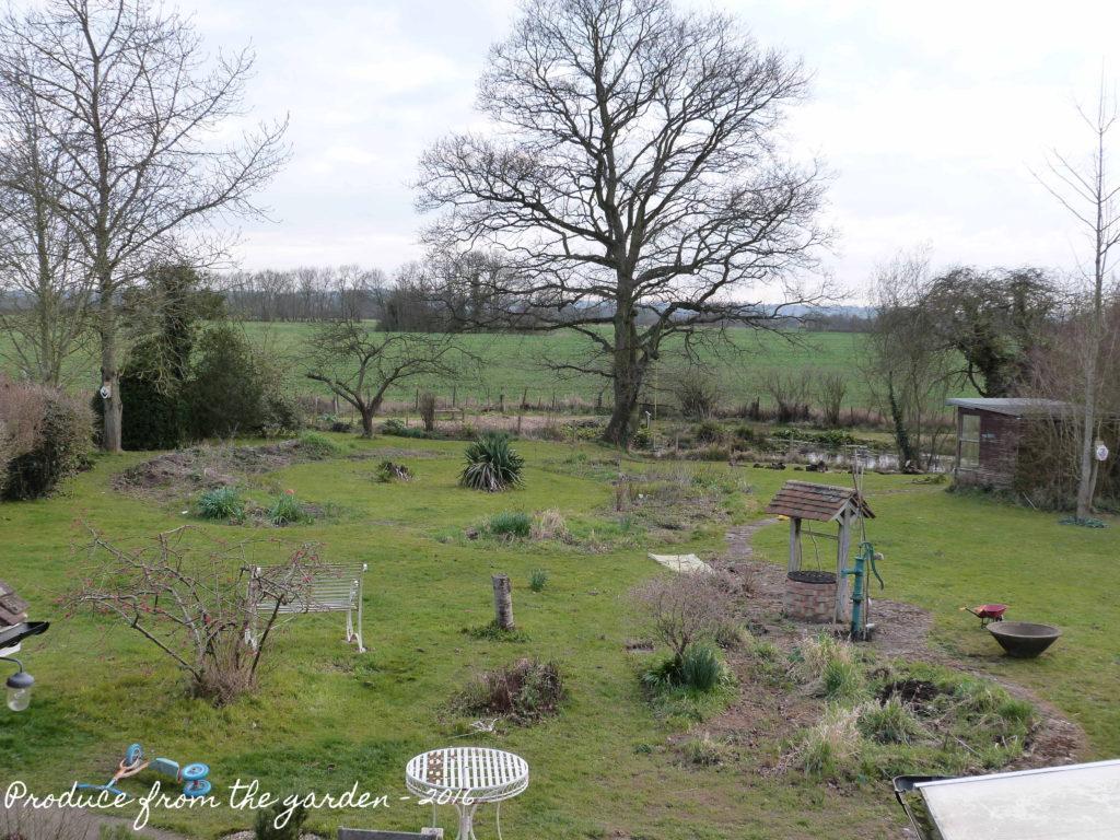 Garden Before Shot