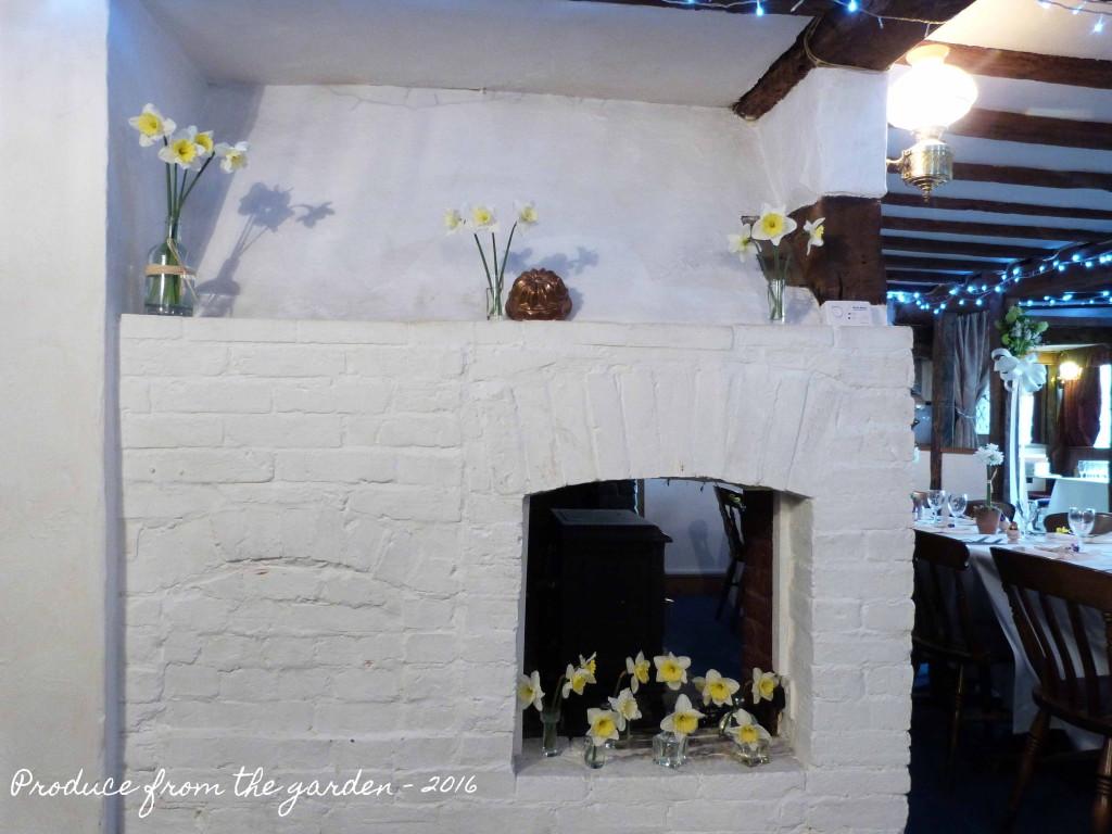 White Wedding Daffodil