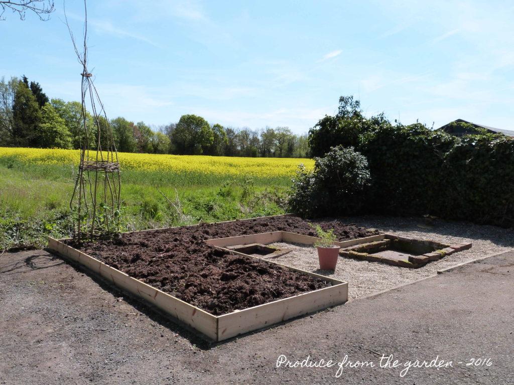 Cutting garden before planting 2