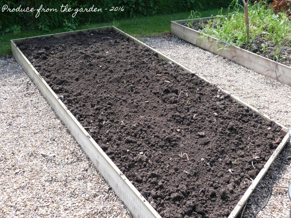 The prepared raised bed