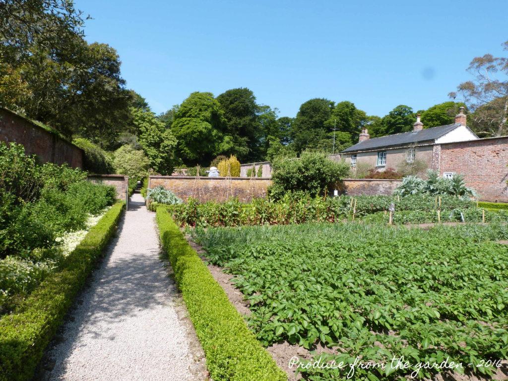 Trengwainton Kitchen garden
