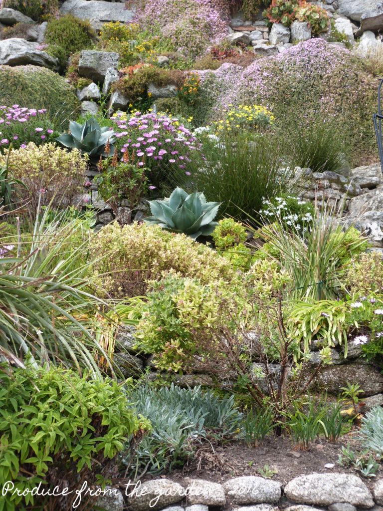 St Michael Mount garden