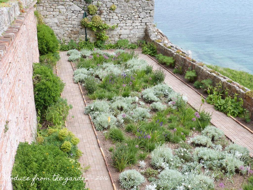 St Michael's Mount Walled Garden 2