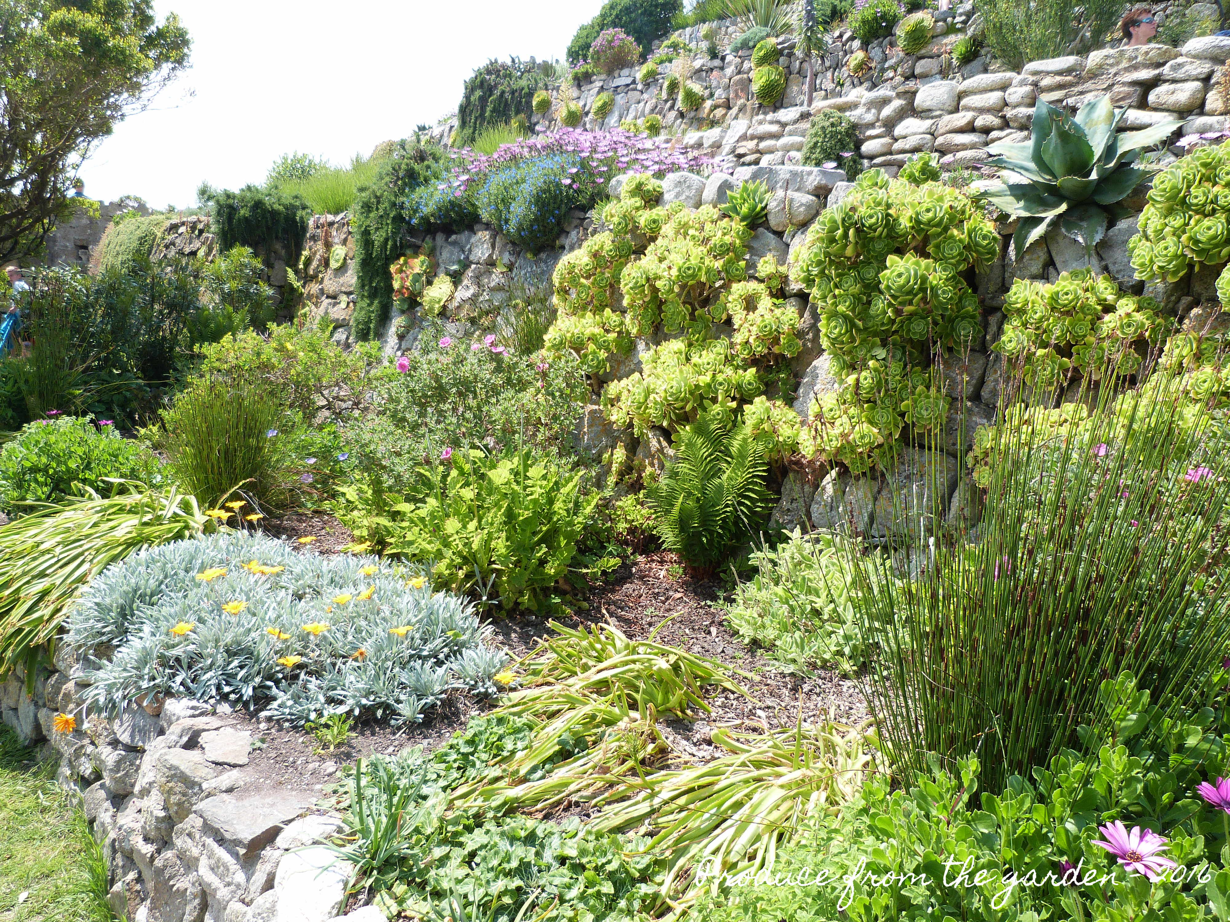 St Michael S Mount Gardens Produce From The Garden Interiors Inside Ideas Interiors design about Everything [magnanprojects.com]