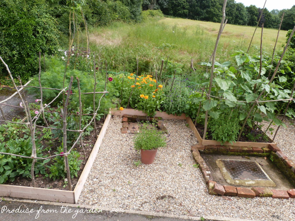 The new cutting border start of July