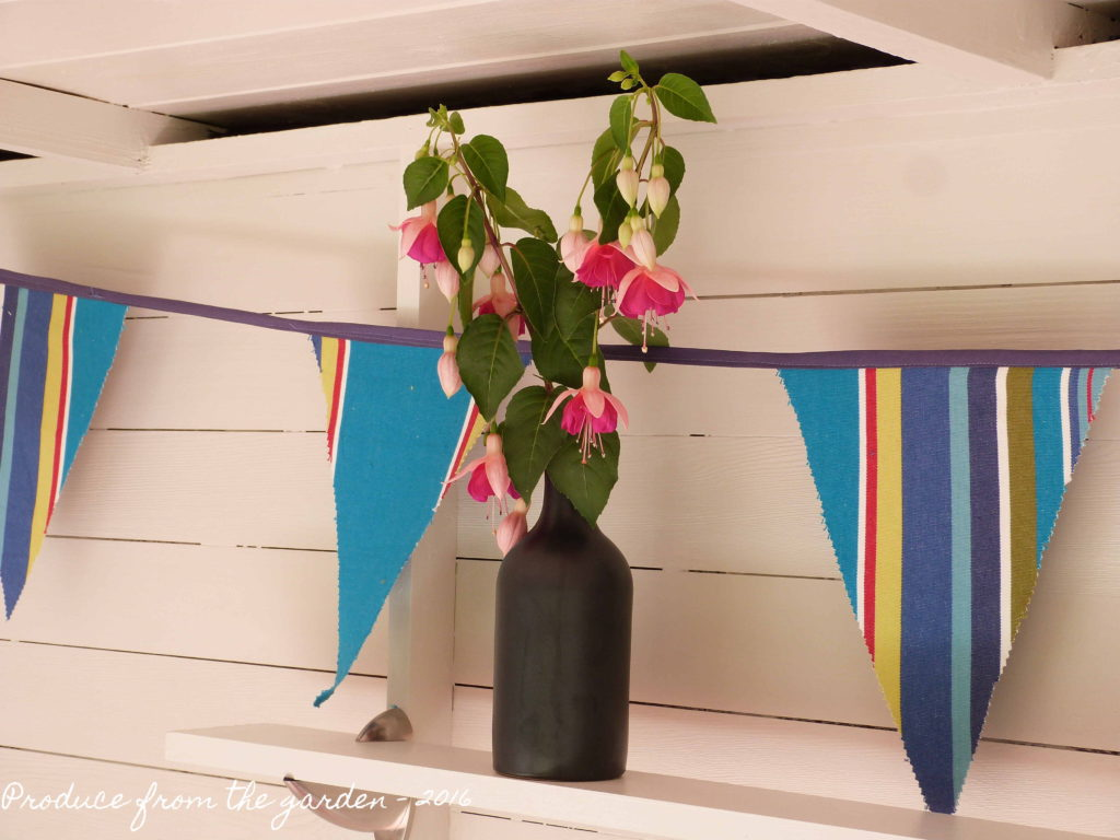Summer House Fuchsia