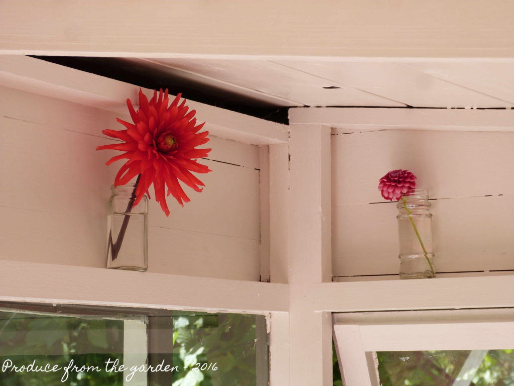 Summer house flowers in nooks and crannies