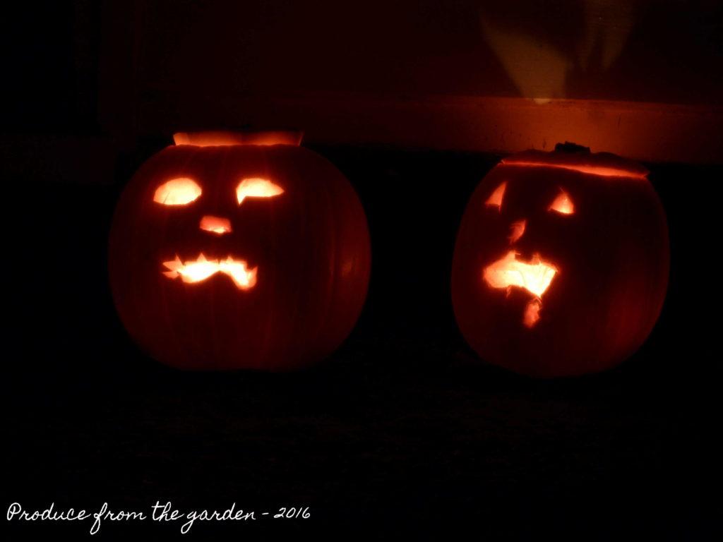halloween-pumpkins-1