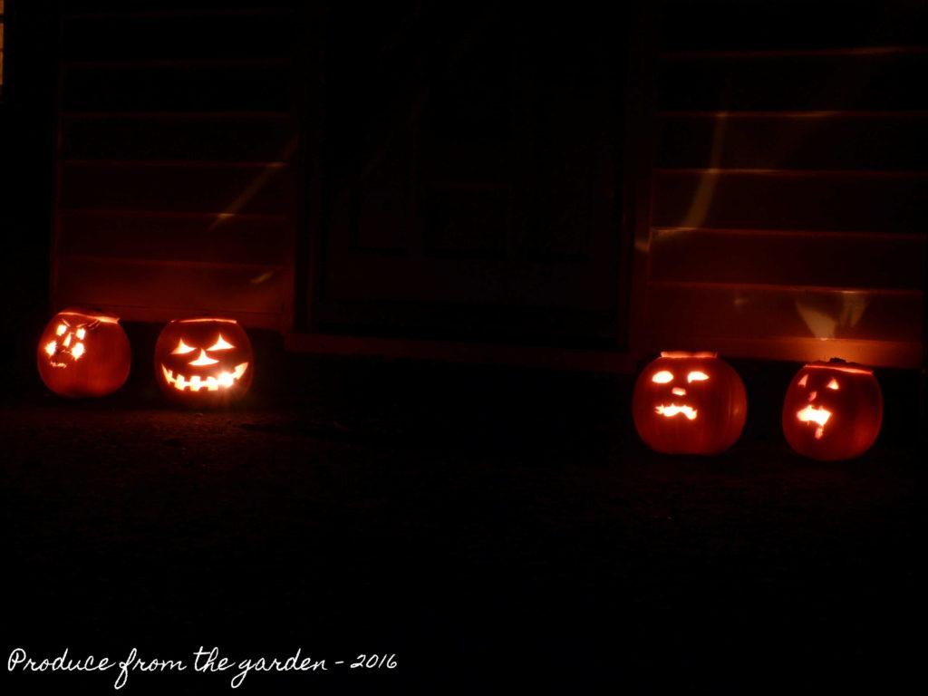 halloween-pumpkins-3