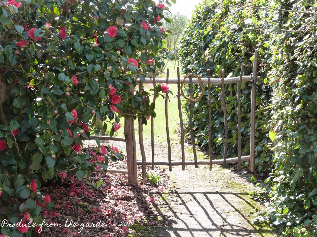 Hazel gate