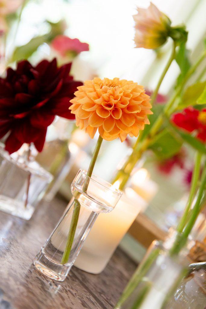 Wedding single stem dahlias