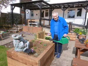 Watering in the alpine plants