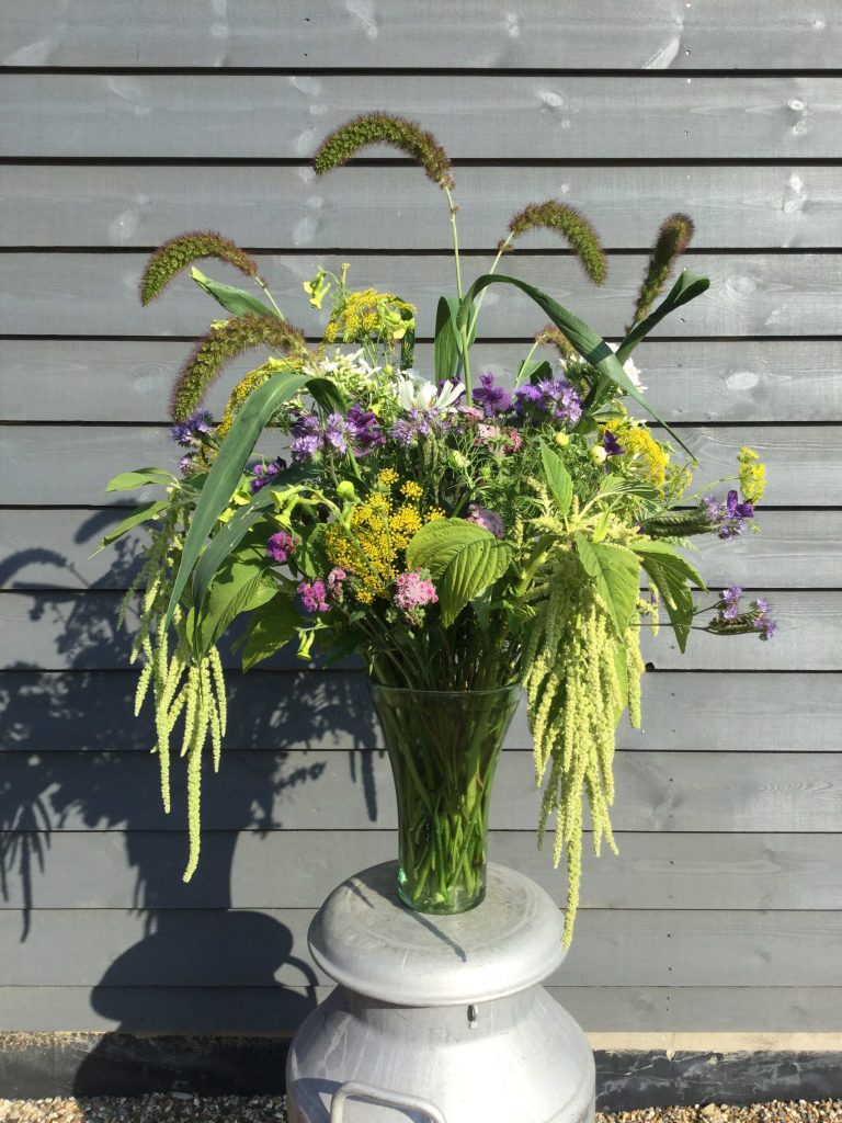 July garden flowers